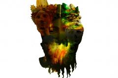 Head of Heads